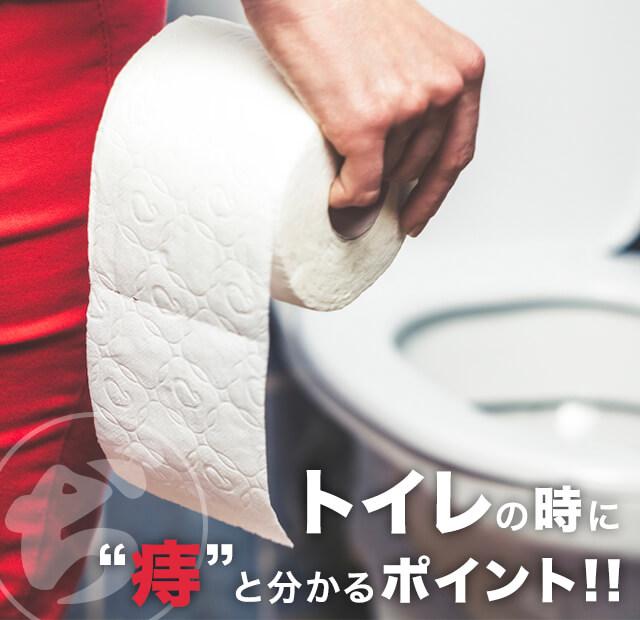 トイレで痔とわかるポイント